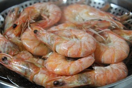 shrimp-489643_640